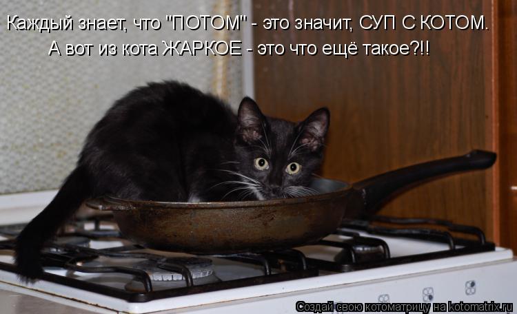 """Котоматрица: Каждый знает, что """"ПОТОМ"""" - это значит, СУП С КОТОМ. А вот из кота ЖАРКОЕ - это что ещё такое?!!"""