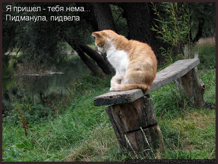 Песня я приеду домой из фильма русский перевод скачать