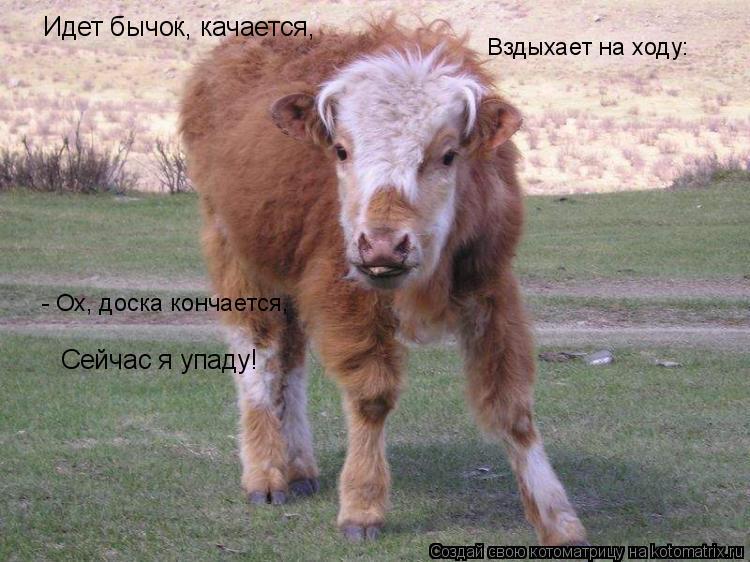 russkaya-seks-video-massazhist-devushka