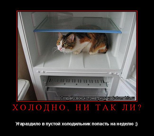 http://kotomatrix.ru/images/lolz/2009/05/04/Jn.jpg