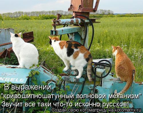 """Котоматрица: В выражении: """"кривошипношатунный волновой механизм"""" Звучит все таки что-то исконно русское!"""
