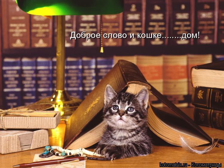 http://kotomatrix.ru/images/lolz/2009/05/04/o.jpg
