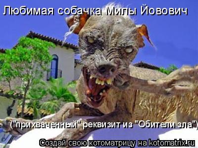 http://kotomatrix.ru/images/lolz/2009/05/04/r3.jpg