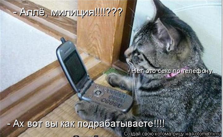 Котоматрица: - Аллё, милиция!!!!??? - Нет, это секс по телефону... - Ах вот вы как подрабатываете!!!!