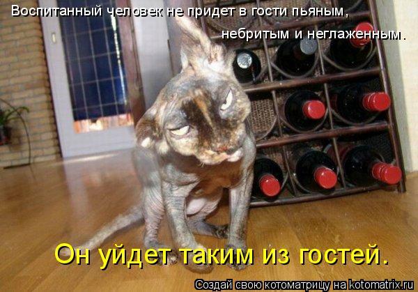 Котоматрица: Воспитанный человек не придет в гости пьяным,  небритым и неглаженным.  Он уйдет таким из гостей.