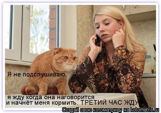 Котоматрица: Я не подслушиваю, я жду когда она наговорится и начнёт меня кормить. ТРЕТИЙ ЧАС ЖДУ!