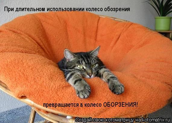 Котоматрица: При длительном использовании колесо обозрения превращается в колесо ОБОРЗЕНИЯ!