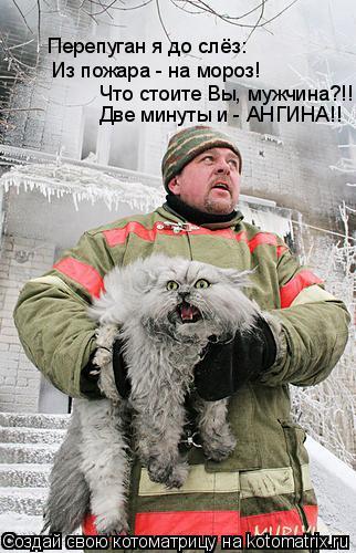 Котоматрица: Из пожара - на мороз! Что стоите Вы, мужчина?!! Перепуган я до слёз: Две минуты и - АНГИНА!!