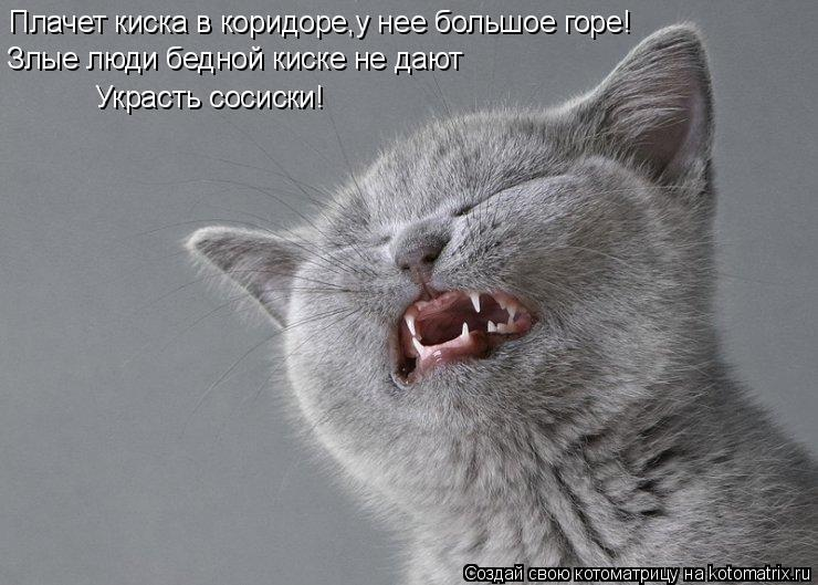Котоматрица: Плачет киска в коридоре,у нее большое горе! Злые люди бедной киске не дают Украсть сосиски!