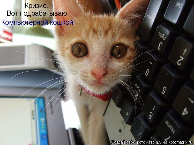 Котоматрица: Кризис... Вот подрабатываю Компьютерной кошкой!