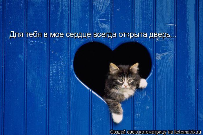 Котоматрица: Для тебя в мое сердце всегда открыта дверь...