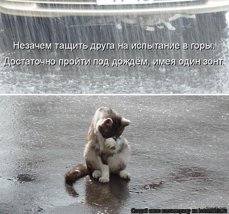 Котоматрица: Незачем тащить друга на испытание в горы. Достаточно пройти под дождём, имея один зонт.