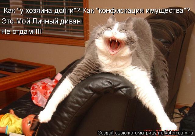 """Котоматрица: Как """"у хозяина долги""""? Как """"конфискация имущества""""?  Это Мой Личный диван!  Не отдам!!!!"""