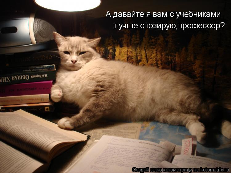Котоматрица: А давайте я вам с учебниками лучше спозирую,профессор?