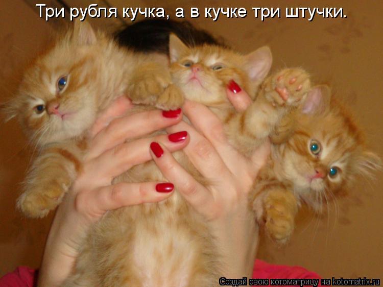 Котоматрица: Три рубля кучка, а в кучке три штучки.