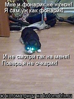 Котоматрица: Мне и фонарик не нужон! Я сам уж как фонарик! И не смотри так на меня! Поверь,я не очкарик!