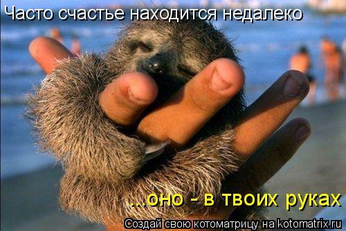 Котоматрица: Часто счастье находится недалеко ...оно - в твоих руках