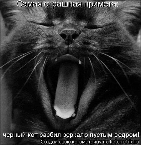 Котоматрица: Самая страшная примета:  черный кот разбил зеркало пустым ведром!
