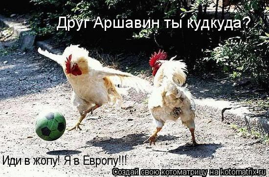 Котоматрица: Иди в жопу! Я в Европу!!! Друг Аршавин ты кудкуда?