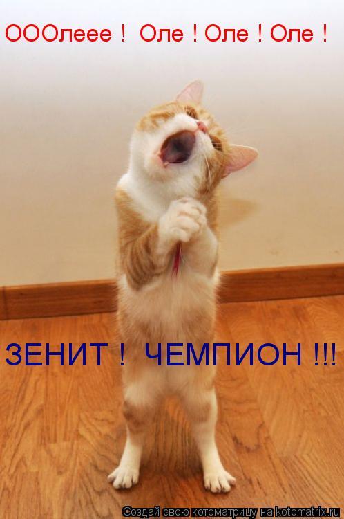 Котоматрица: ОООлеее !  Оле ! Оле ! Оле ! ЗЕНИТ !  ЧЕМПИОН !!!