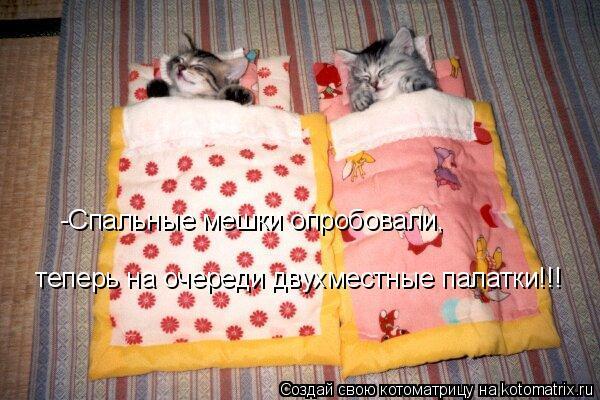 Котоматрица: -Спальные мешки опробовали,  теперь на очереди двухместные палатки!!!