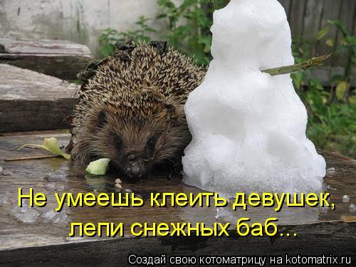 Котоматрица: Не умеешь клеить девушек, лепи снежных баб...