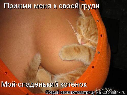 Котоматрица: Прижми меня к своей груди Мой сладенький котенок