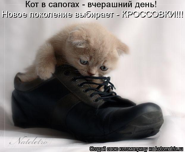 Котоматрица: Кот в сапогах - вчерашний день! Новое поколение выбирает - КРОССОВКИ!!!