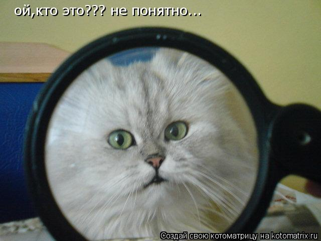 Котоматрица: ой,кто это??? не понятно...