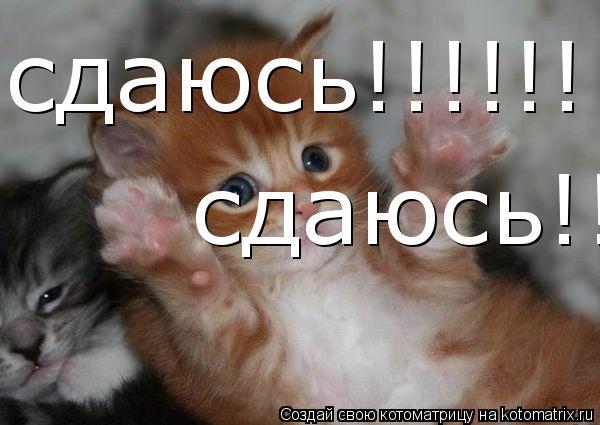 http://kotomatrix.ru/images/lolz/2009/05/07/pd4.jpg