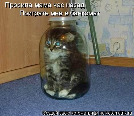 Котоматрица: Просила мама час назад Поиграть мне в банкомат