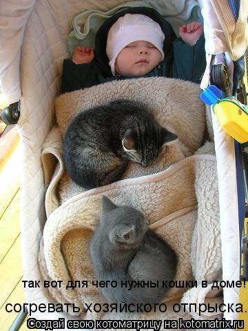 Котоматрица: так вот для чего нужны кошки в доме! согревать хозяйского отпрыска.