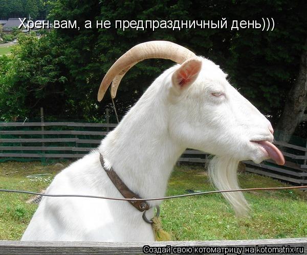 Котоматрица: Хрен вам, а не предпраздничный день)))