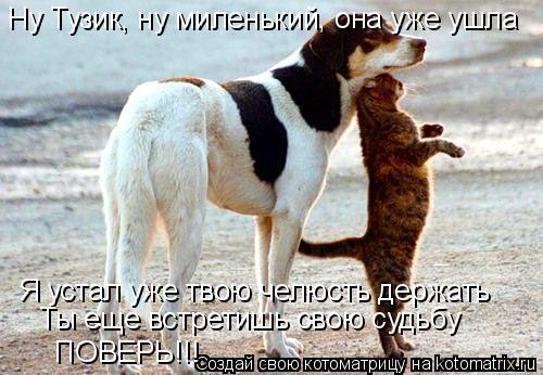Котоматрица: Ну Тузик, ну миленький, она уже ушла Я устал уже твою челюсть держать Ты еще встретишь свою судьбу ПОВЕРЬ!!!