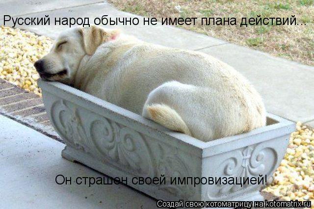 Котоматрица: Русский народ обычно не имеет плана действий...  Он страшен своей импровизацией!