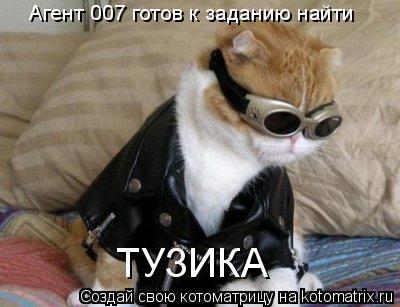 Котоматрица: Агент 007 готов к заданию найти  ТУЗИКА