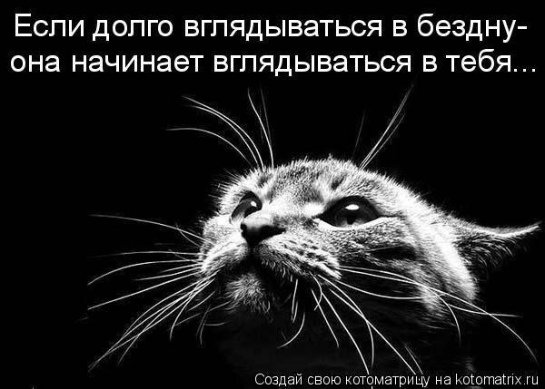 Котоматрица: Если долго вглядываться в бездну- она начинает вглядываться в тебя...