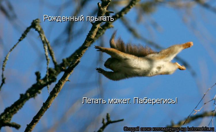 Котоматрица: Рожденный прыгать Летать может. Паберегись!