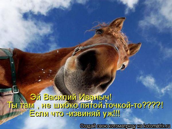 Котоматрица: Эй Василий Иваныч! Ты там , не шибко пятой точкой-то????! Если что -извиняй уж!!!