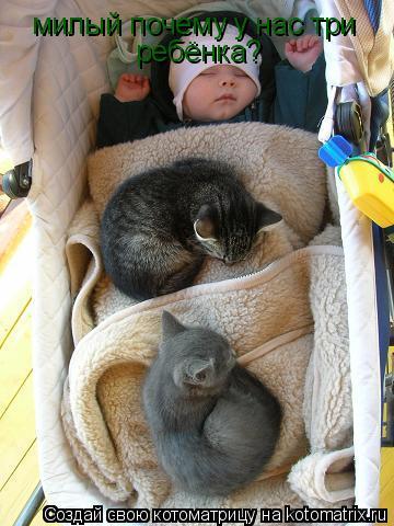 Котоматрица: милый почему у нас три ребёнка?