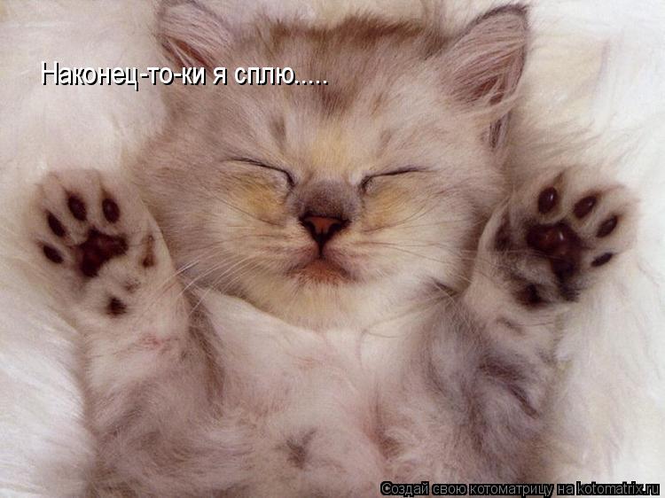 Котоматрица: Наконец-то-ки я сплю.....
