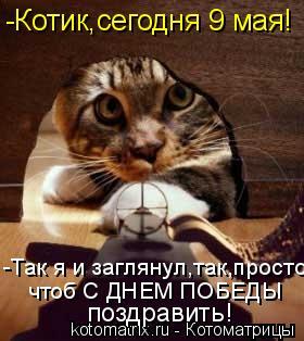 Котоматрица: поздравить! -Котик,сегодня 9 мая! -Так я и заглянул,так,просто  чтоб С ДНЕМ ПОБЕДЫ