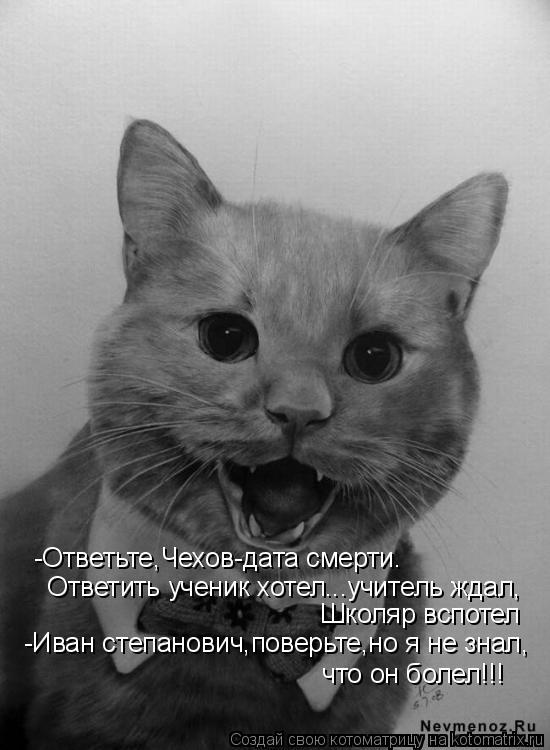 Котоматрица: -Ответьте,Чехов-дата смерти.  Ответить ученик хотел...учитель ждал,  Школяр вспотел -Иван степанович,поверьте,но я не знал,  что он болел!!!
