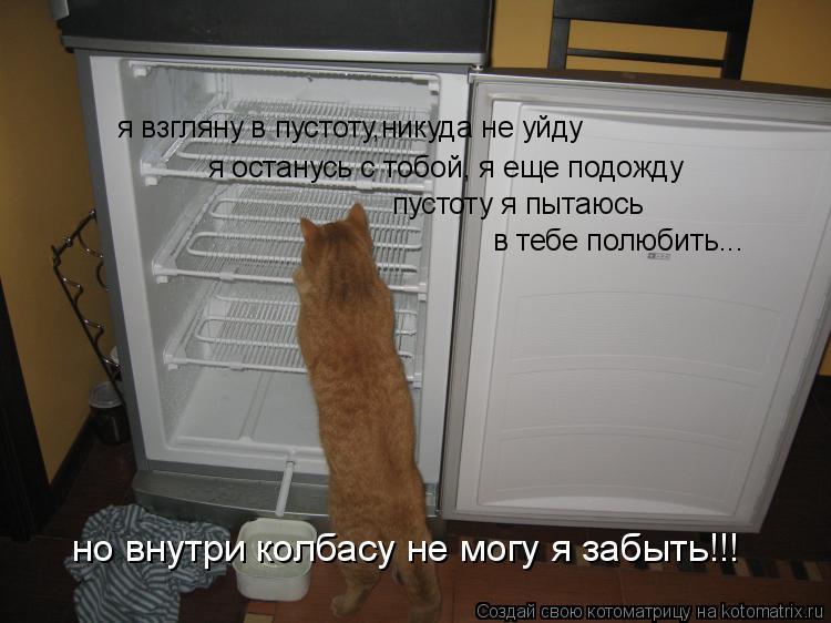 Котоматрица: я взгляну в пустоту,никуда не уйду я останусь с тобой, я еще подожду пустоту я пытаюсь  в тебе полюбить... но внутри колбасу не могу я забыть!!!