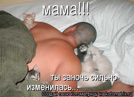 Котоматрица: мама!!! ты заночь сильно изменилась...