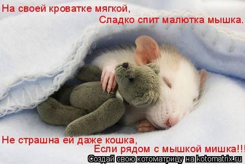 Котоматрица: На своей кроватке мягкой, Сладко спит малютка мышка. Не страшна ей даже кошка, Если рядом с мышкой мишка!!!