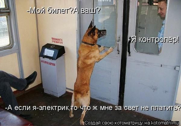 Котоматрица: -Мой билет?А ваш?  -Я контролёр!  -А если я-электрик,то что ж мне за свет не платить?