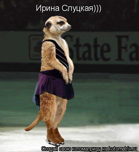 Котоматрица: Ирина Слуцкая)))
