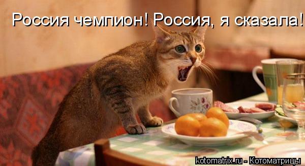 Котоматрица: Россия чемпион! Россия, я сказала!