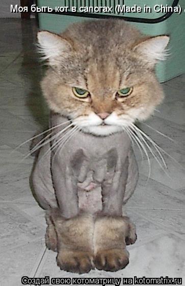 Котоматрица: Моя быть кот в сапогах (Made in China)